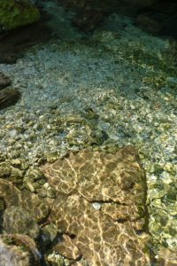 Glasklares Wasser am Slap Virje Slowenien