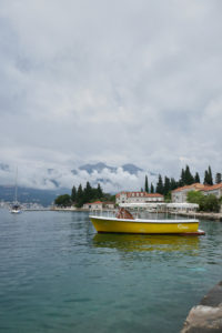 Rose Lustica Kotor Montenegro