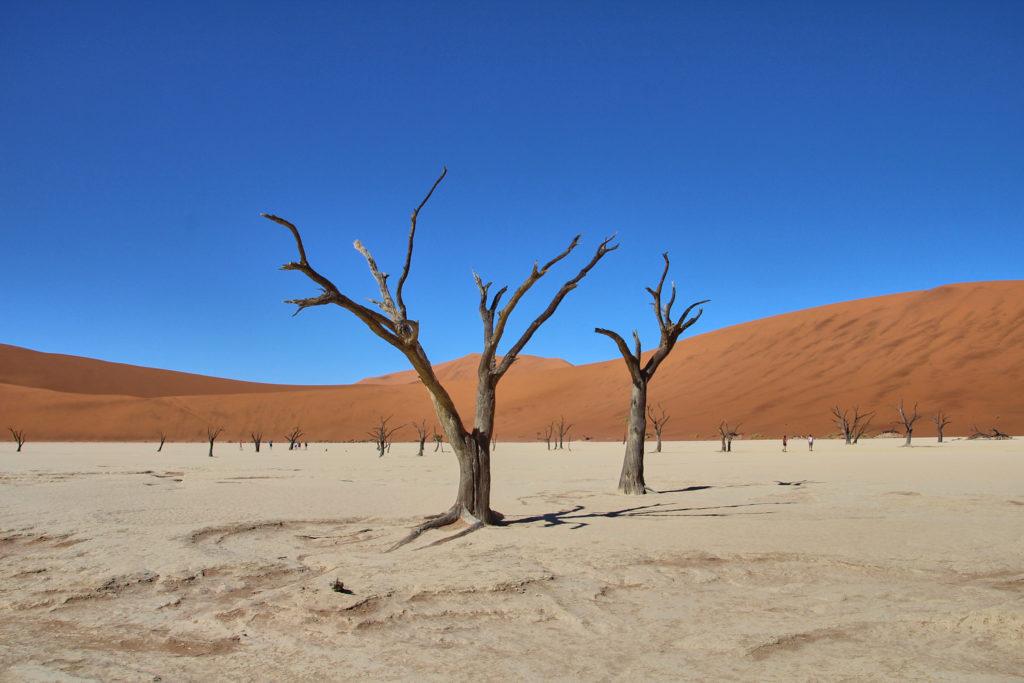 Dead Vlei, Namib-Naukluft-Nationalpark Namibia