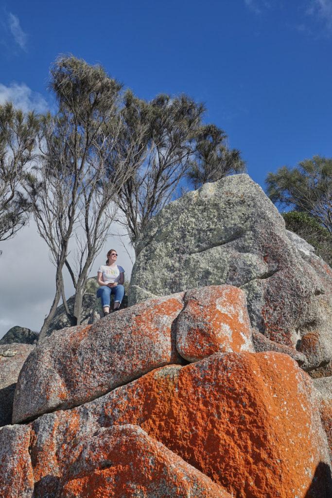 Sehenswürdigkeiten Tasmanien Bay of Fires