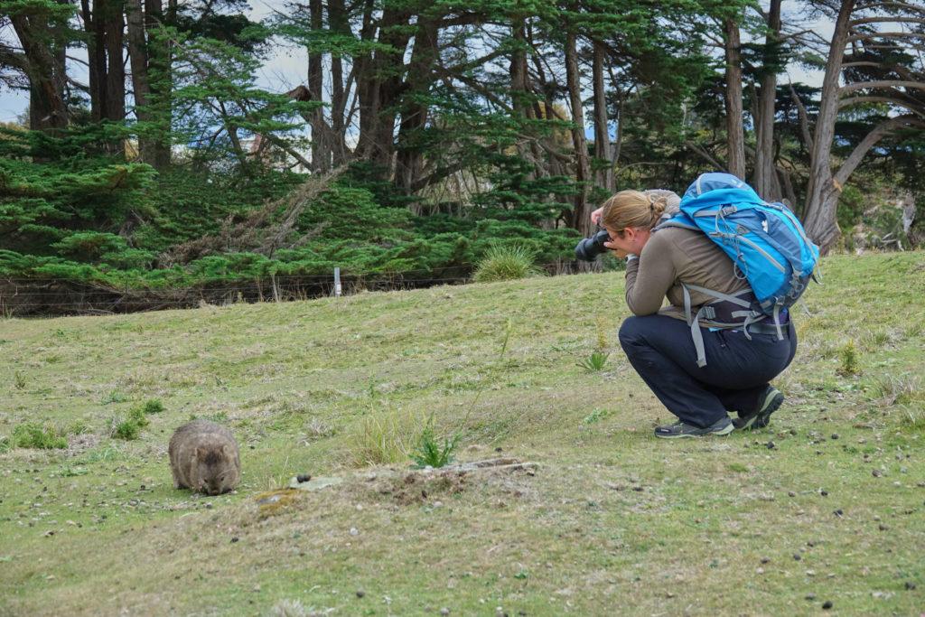 Maria Island Tasmanien