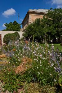 Pisa Urlaub Botanischer Garten