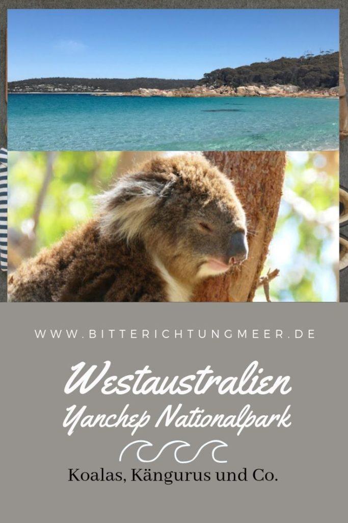Pinterest Graphik Yanchep Nationalpark