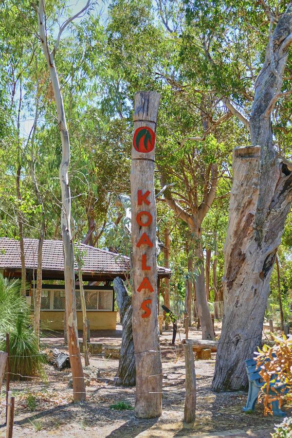 Koala Board Walk Yanchep Nationalpark
