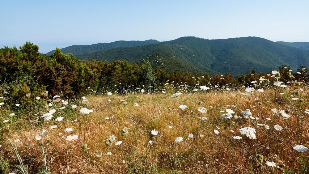 Elba Wanderung Ausblick