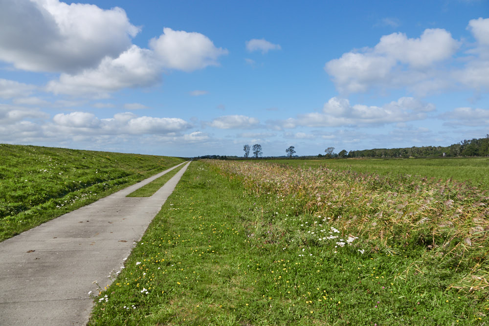 Zingst Radwege Ostsee