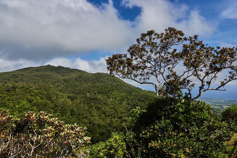 Mauritius Alexandra Falls Viewpoint