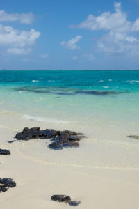 Mauritius Pointe d'esny