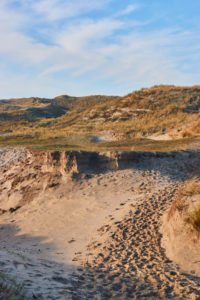 Dünenreservat Egmond aan Zee