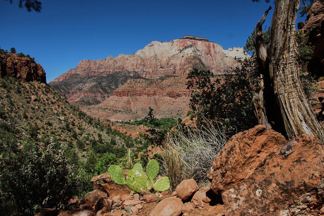 Nationalparks Zion USA Rundreise Westen