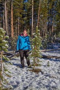 USA Westen Rundreise Schnee im Yellowstone NP
