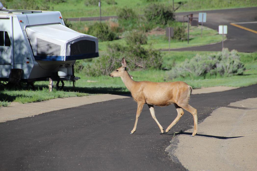 Mesa Verde Nationalpark USA Rundreise Westen